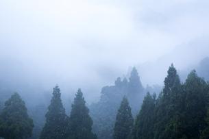 雨上がりの山の写真素材 [FYI00576285]
