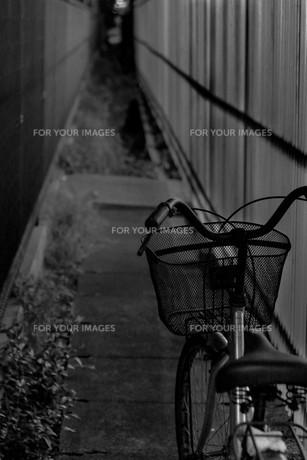 細道と自転車の写真素材 [FYI00580385]