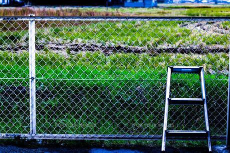 フェンスと脚立の写真素材 [FYI00580398]