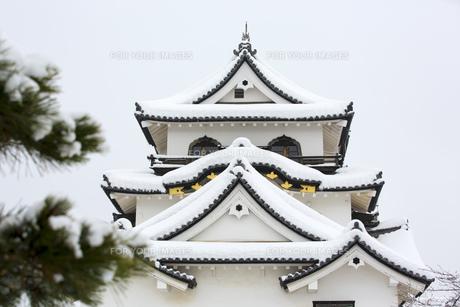 雪の彦根城の写真素材 [FYI00580459]