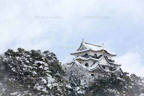 雪の彦根城の写真素材 [FYI00580463]