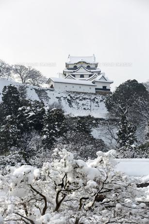 雪の彦根城の写真素材 [FYI00580464]