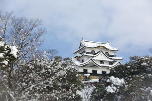 雪の彦根城の写真素材 [FYI00580471]