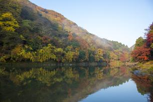 秋の京都嵐山渓谷の写真素材 [FYI00582837]