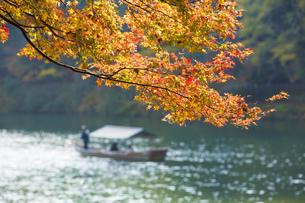 秋の京都嵐山の写真素材 [FYI00582844]