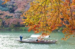 秋の京都嵐山の写真素材 [FYI00582845]