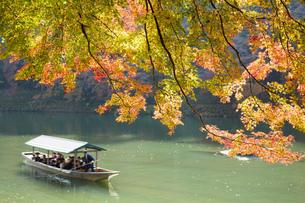 秋の京都嵐山の写真素材 [FYI00582849]