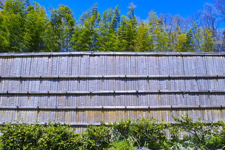 竹のフェンスと青空の写真素材 [FYI00585176]