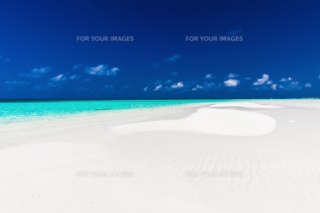 blueの写真素材 [FYI00592695]