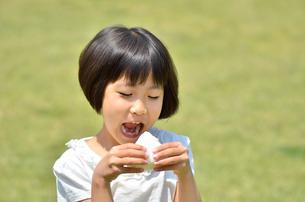 芝生広場でおにぎりを食べる女の子の写真素材 [FYI00602762]