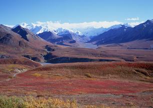 アラスカ山脈の素材 [FYI00603203]