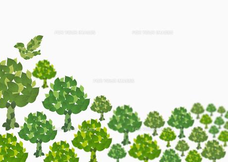 森林イメージの素材 [FYI00603329]