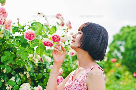 花の前に立つ女性の素材 [FYI00603503]