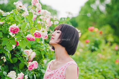 花の前に立つ女性の素材 [FYI00603504]