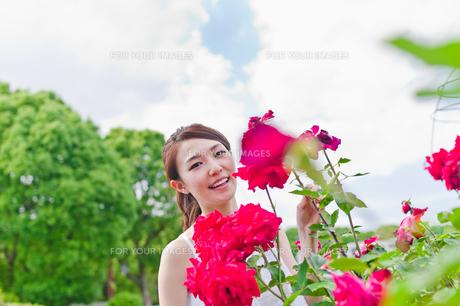 花の前に立つ女性の素材 [FYI00603507]
