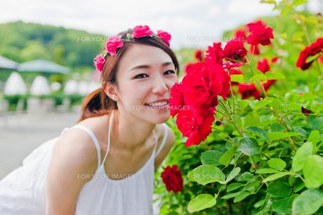 花の前に立つ女性の写真素材 [FYI00603515]