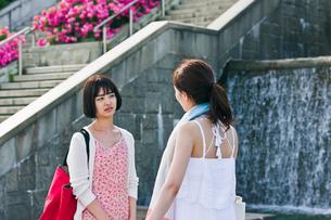 会話する女性二人の写真素材 [FYI00603551]