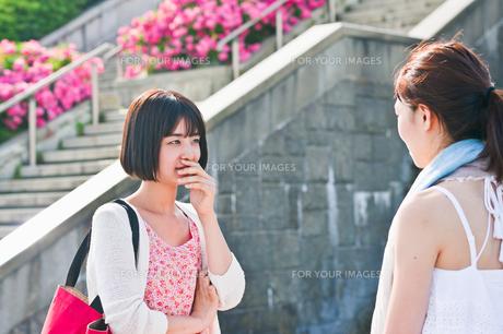 会話する女性二人の素材 [FYI00603552]