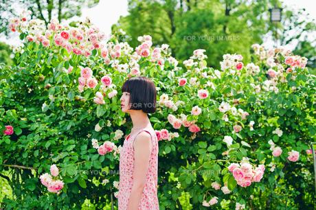 花の前に立つ女性の素材 [FYI00603595]