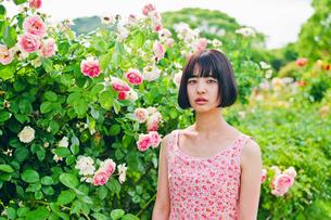 花の前に立つ女性の素材 [FYI00603596]