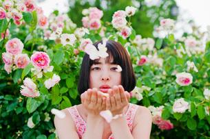 花びらを吹く女性の素材 [FYI00603604]