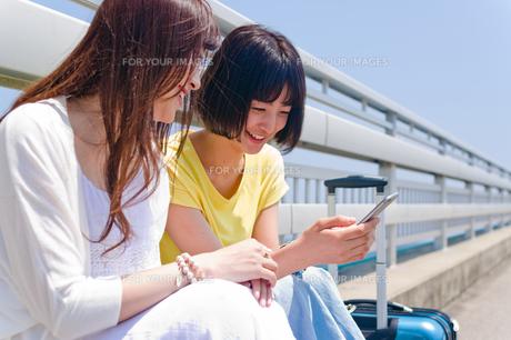 スマホを見ながら会話する女性の写真素材 [FYI00603629]