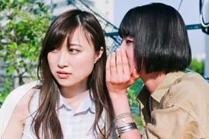 ひそひそ話をする女性の写真素材 [FYI00603718]
