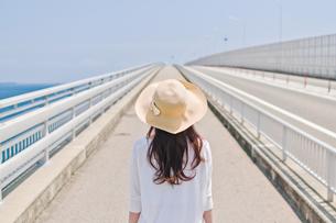 前を見据える女性の後ろ姿の素材 [FYI00603745]
