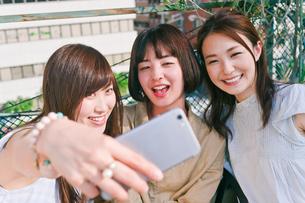 自撮りをする女性三人の写真素材 [FYI00603842]