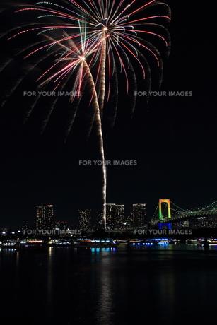 お台場の冬の花火 割物 型 花火【椰子】の写真素材 [FYI00604325]
