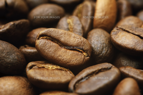 cafeの素材 [FYI00611357]