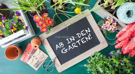 gardenの素材 [FYI00612445]