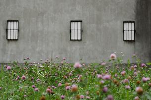 倉庫の窓の写真素材 [FYI00613933]