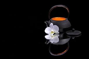 teaの素材 [FYI00615037]