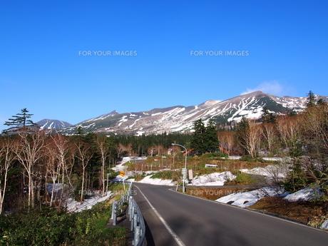 初夏 旭岳の写真素材 [FYI00618977]