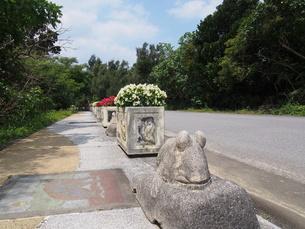 石垣島 歩道のオブジェの写真素材 [FYI00618982]
