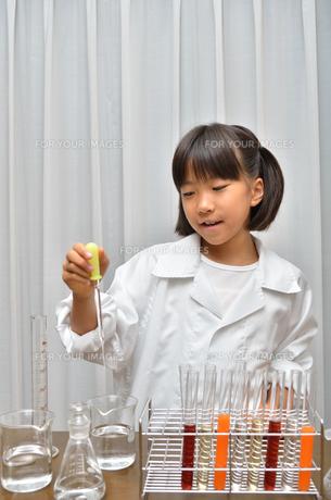 理科の実験をする女の子の写真素材 [FYI00619217]