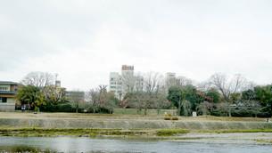 京都鴨川の写真素材 [FYI00619331]