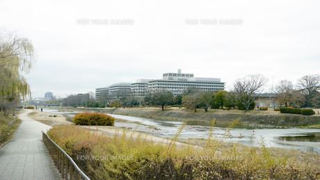 京都鴨川の写真素材 [FYI00619333]