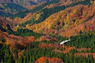 秋の東北 紅葉ドライブの写真素材 [FYI00619432]