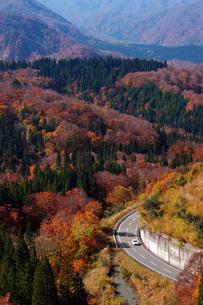 秋の東北 紅葉ドライブの写真素材 [FYI00619434]