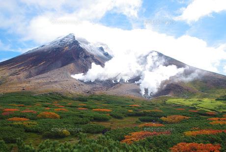 紅葉と冠雪のコラボ 北海道・旭岳の写真素材 [FYI00619492]