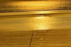 朝日に光る海の写真素材 [FYI00619663]