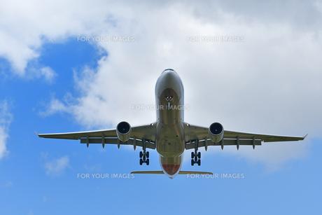 着陸する旅客機の写真素材 [FYI00619778]