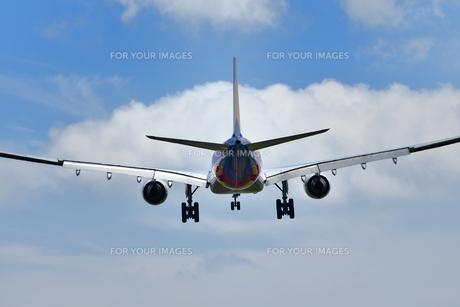 着陸する旅客機の写真素材 [FYI00619779]