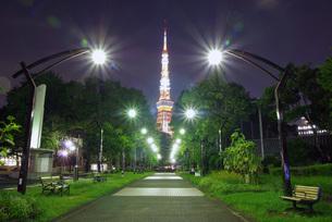 芝公園4号地と東京タワーの写真素材 [FYI00619787]
