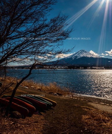 富士山と河口湖の写真素材 [FYI00619836]