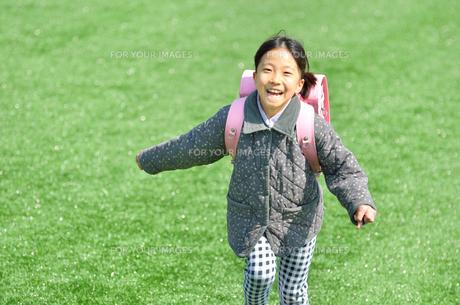 芝生広場で走る小学生の女の子(ランドセル)の写真素材 [FYI00620738]