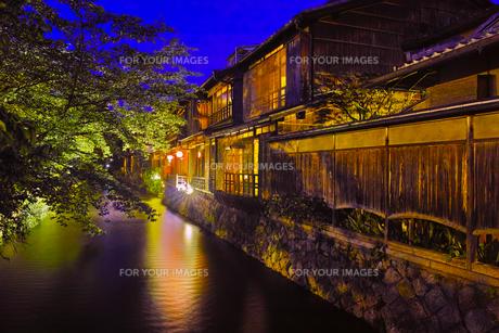 京都 夜の祇園白川の風景の写真素材 [FYI00620835]