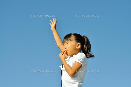 青空で笛を吹く女の子の写真素材 [FYI00620887]
